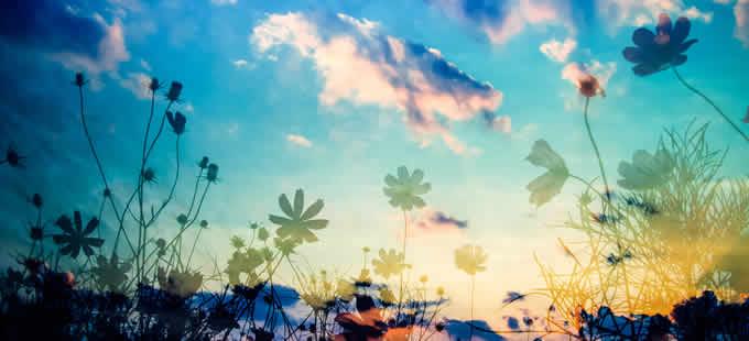 奇跡を起こしたいのなら、とにかく許す、許す、許すのみ!